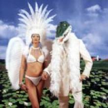 "Paul Gilbert ""Alligator Farm"""