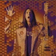 "Paul Gilbert ""Beehive Live"""