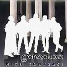 "Gamalon ""High Contrast"""