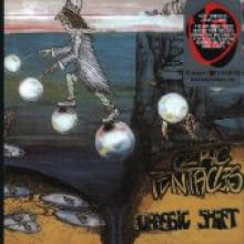 "Ozric Tentacles ""Jurassic Shift"""