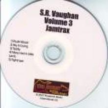 """Just Jamtrax: Stevie Ray Vaughan Vol. 3"""