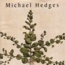 "Michael Hedges ""Taproot"""