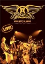 "Aerosmith ""You Gotta Move"""